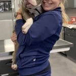 A veterinary student holding a dog in a clinic